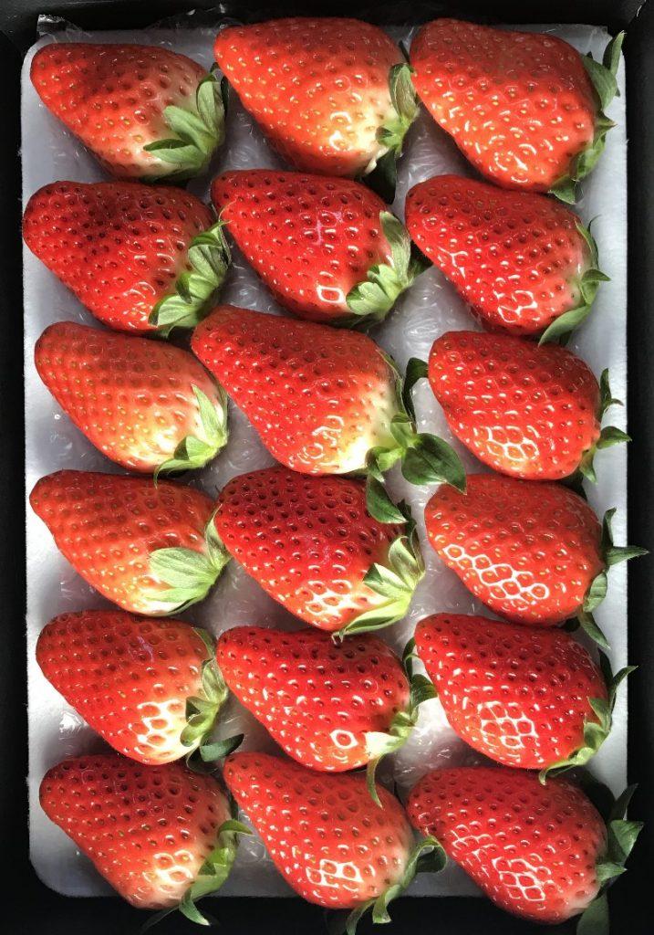 静岡いちご:ジャンボイチゴ18粒
